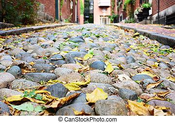 Historic Acorn Street at Boston