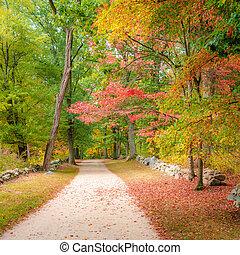 Battle Road Trail
