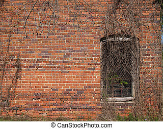 Historic Brick Wall with Window