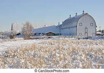 Historic Dairy Barn at Creamer's Field during Winter - Fairbanks, Alaska