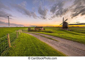 Historic windmill in grassy dairy landscape - Ultra wide...