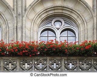 historic window in Dresden