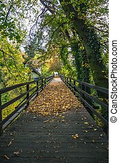 Historic wooden bridge in a park surrounded by autumn colors in a foggy morning. Ner castle Loucen.