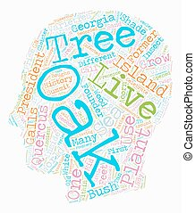 History Of Oak Trees Quercus Sp text background wordcloud...