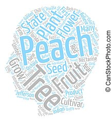 History Of Peach Trees Prunus Persica text background wordcloud concept