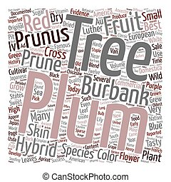 History Of Plum Trees And Their Hybrids text background wordcloud concept
