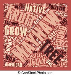 History Of The Mayhaw text background wordcloud concept