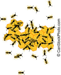 Hive bees and honey
