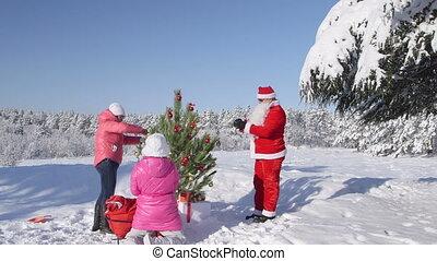 hiver, arbre généalogique, neige, décore, forêt, couvert, noël