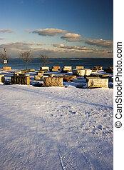 hiver, chicago