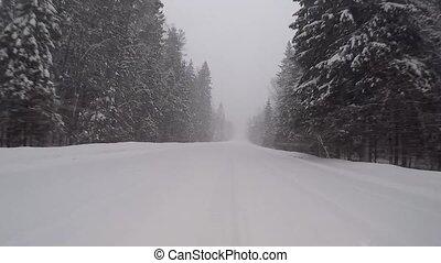 hiver, conduite, neige, forêt, orage, route