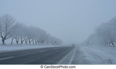 hiver, conduite, neigeux, voitures, day., route pays