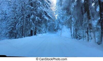 hiver, conduite, route, neigeux, par, forêt, austria.