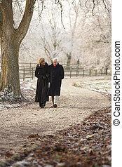 hiver, couple, promenade, par, glacial, personne agee, paysage