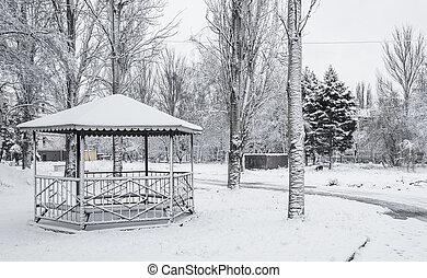 hiver dans ville, parc