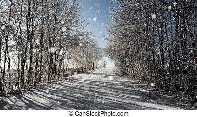hiver, ensoleillé, glacial, w, jour, route