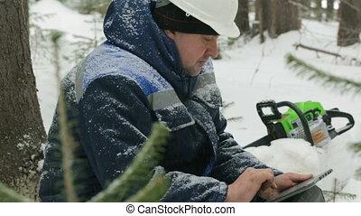 hiver, fonctionnement, tablette, ouvrier, informatique, forêt