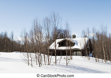 hiver, forêt, cabine