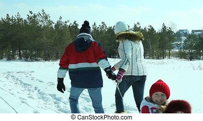 hiver, jour, promenade