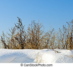 hiver, matin