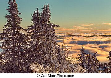 hiver, montagnes