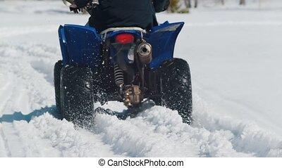 hiver, neige, surmonter, forest., personne, motoneige, équitation