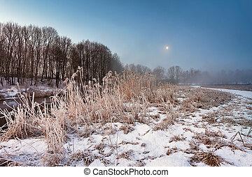 hiver, neigeux, clair lune, aube, rivière, brouillard, brume