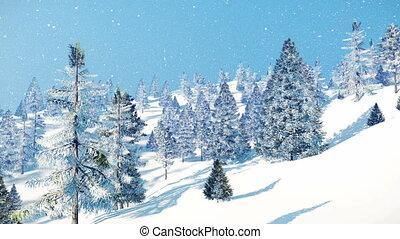 hiver, neigeux, journée, chute neige, 4k, sapins