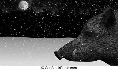 hiver, neigeux, sauvage, animation, forêt, nuit, verrat