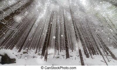 hiver, noël, fond, année, nouveau