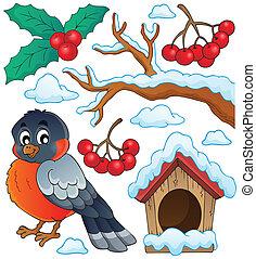 hiver, oiseau, thème, collection, 1