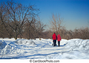 hiver, parc, jeune, promenade, parents, bébé