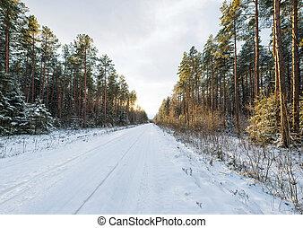 hiver, paysage neige, route, couvert, vide