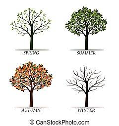 hiver, printemps, arbres., vecteur, automne, été, illustration.
