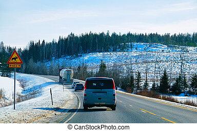 hiver, réflexe, finlande, forêt, neigeux, route, fourgon, mini
