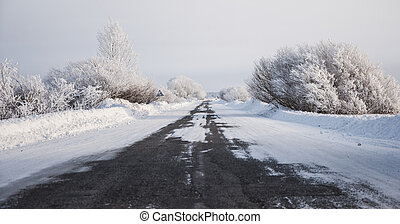 hiver, route, neigeux