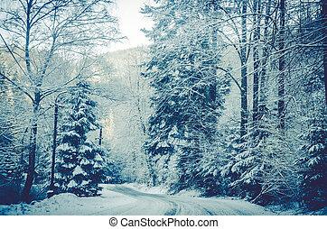 hiver, route, temps