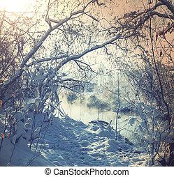 hiver, ruisseau