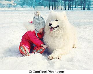 hiver, samoyed, neige, chien, enfant, blanc, jour