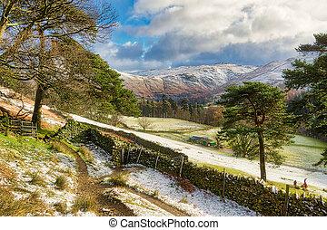 hiver scénique, arbres, par, glenridding., sentier