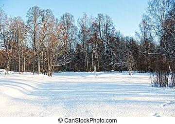 hiver scénique