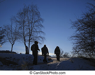 hiver, track., caucas, aller, équipe, touristes
