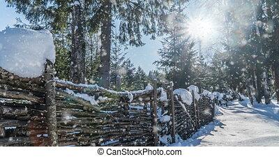 hiver, vidéo, beau, lent, paysage, chute neige, maison, forêt, boucle, ensoleillé, cinemagraph