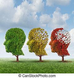 hjärna, åldrande