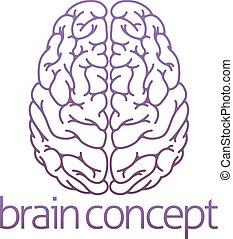 hjärna, abstrakt, illustration