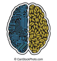 hjärna, abstrakt, mänsklig