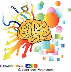 hjärna, abstrakt, /, skapande