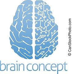 hjärna, begrepp, bord, strömkrets