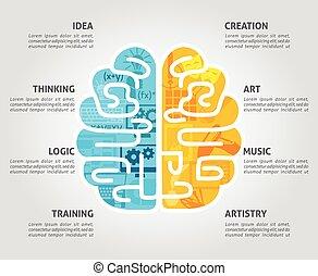 hjärna, begrepp, lägenhet