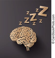 hjärna, begrepp, sömn